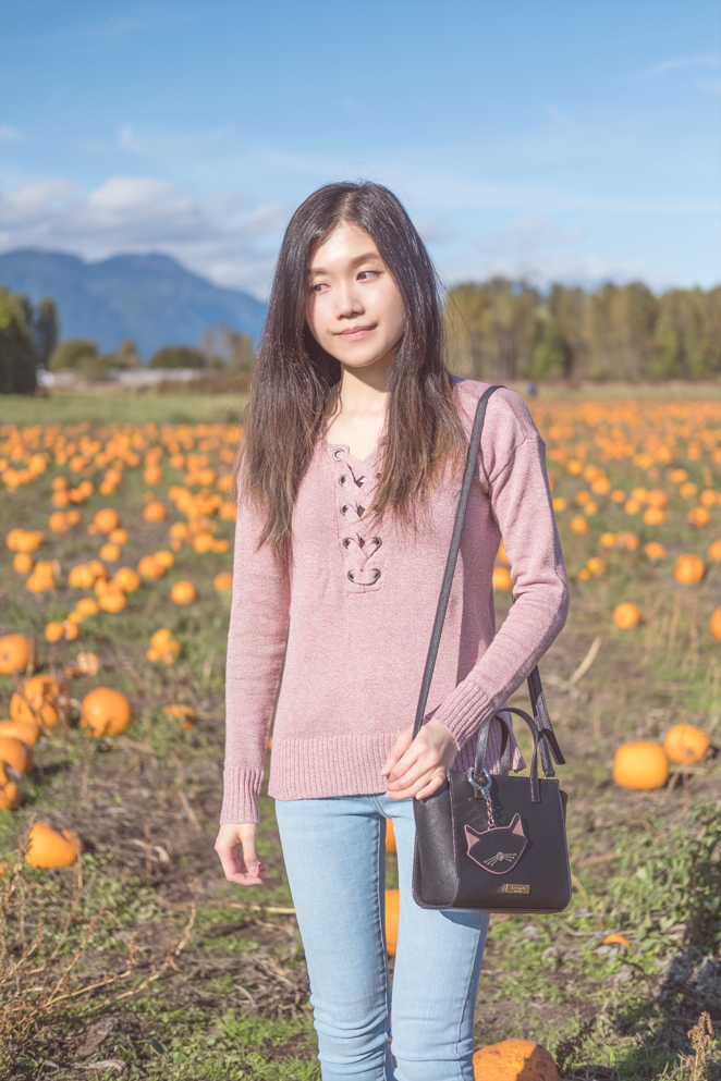 pink lace sweater, pumpkin patch, Kate Spade mini Hayden